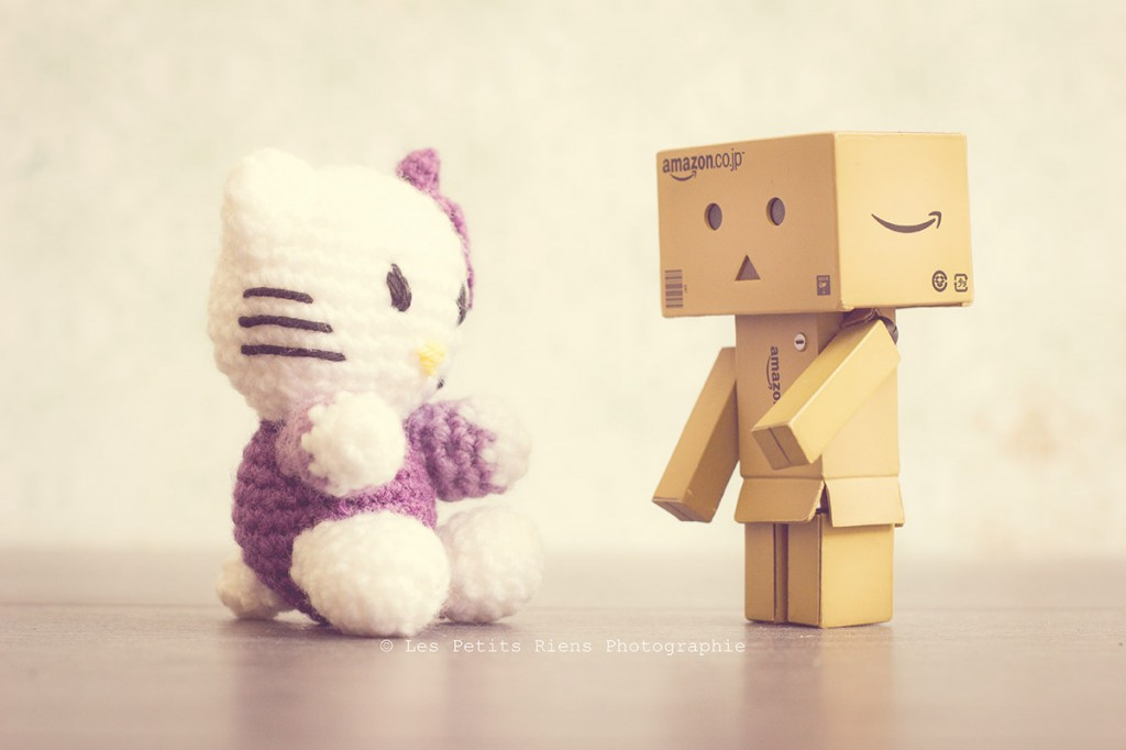 Danbo_Hello-Kitty