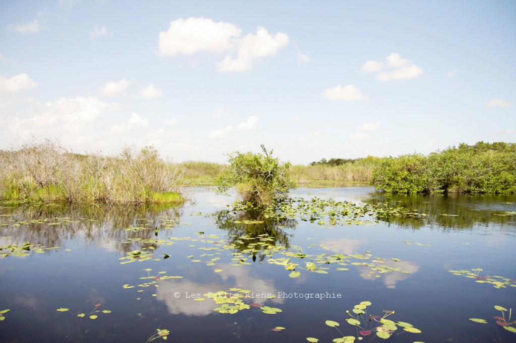 Floride_sept13_Everglades_01