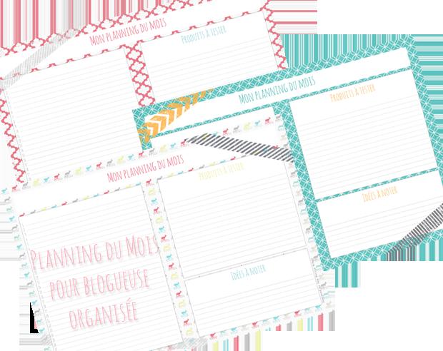 Planning Mensuel organisteur pour blogueuse