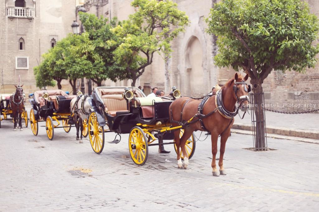 Seville_mai2014_15