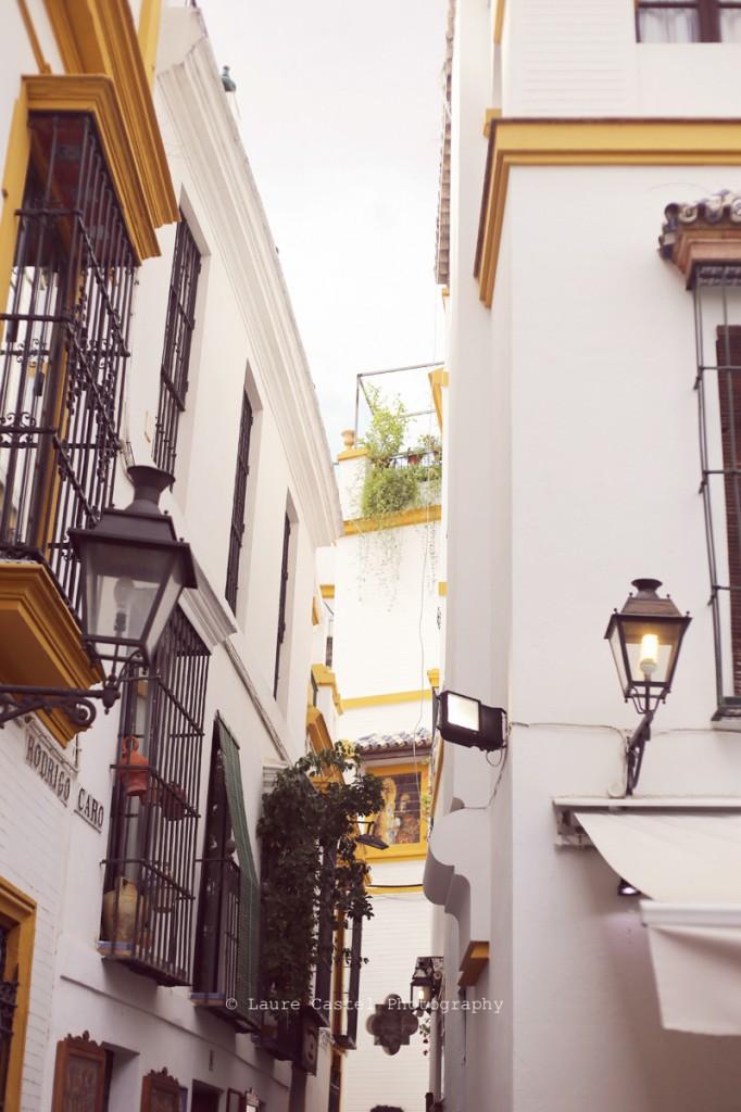 Seville_mai2014_29