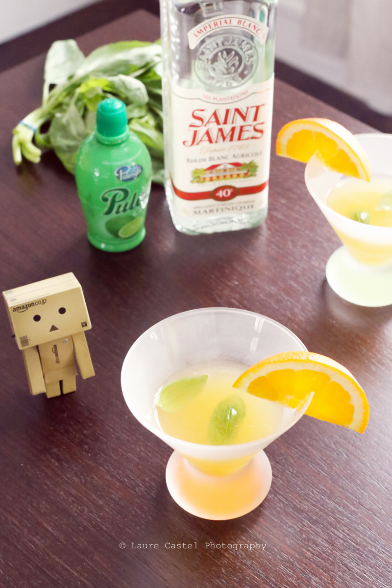 Cocktail Rhum St James
