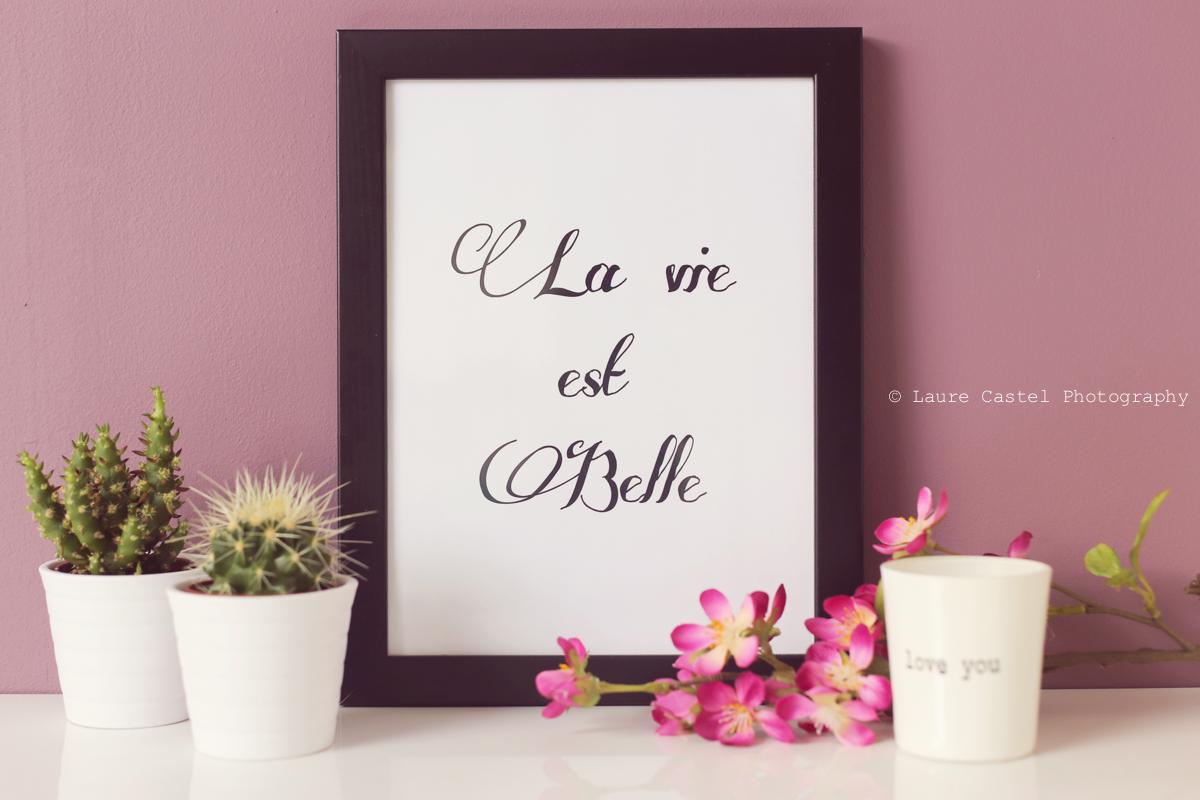 Affiche La Vie Est Belle A4 à imprimer