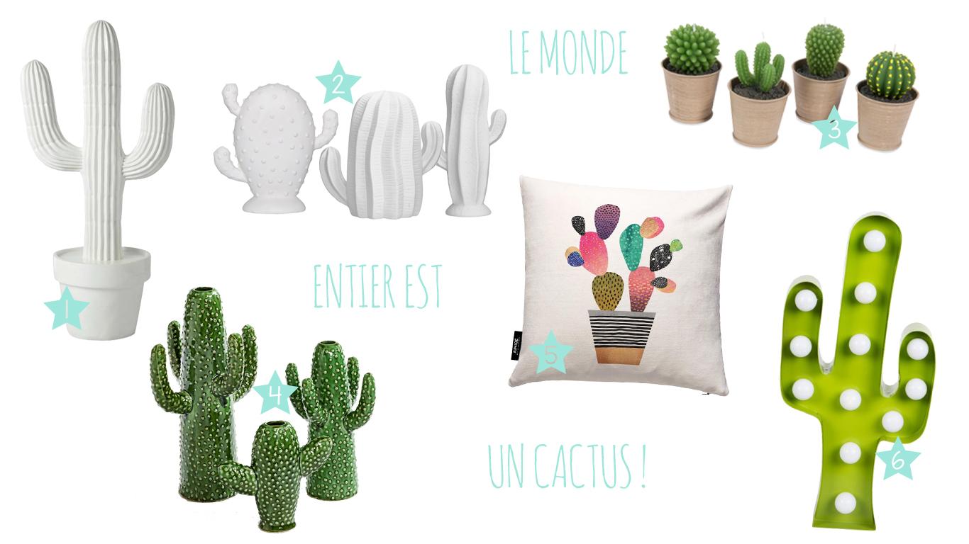 cactus décoration sélection