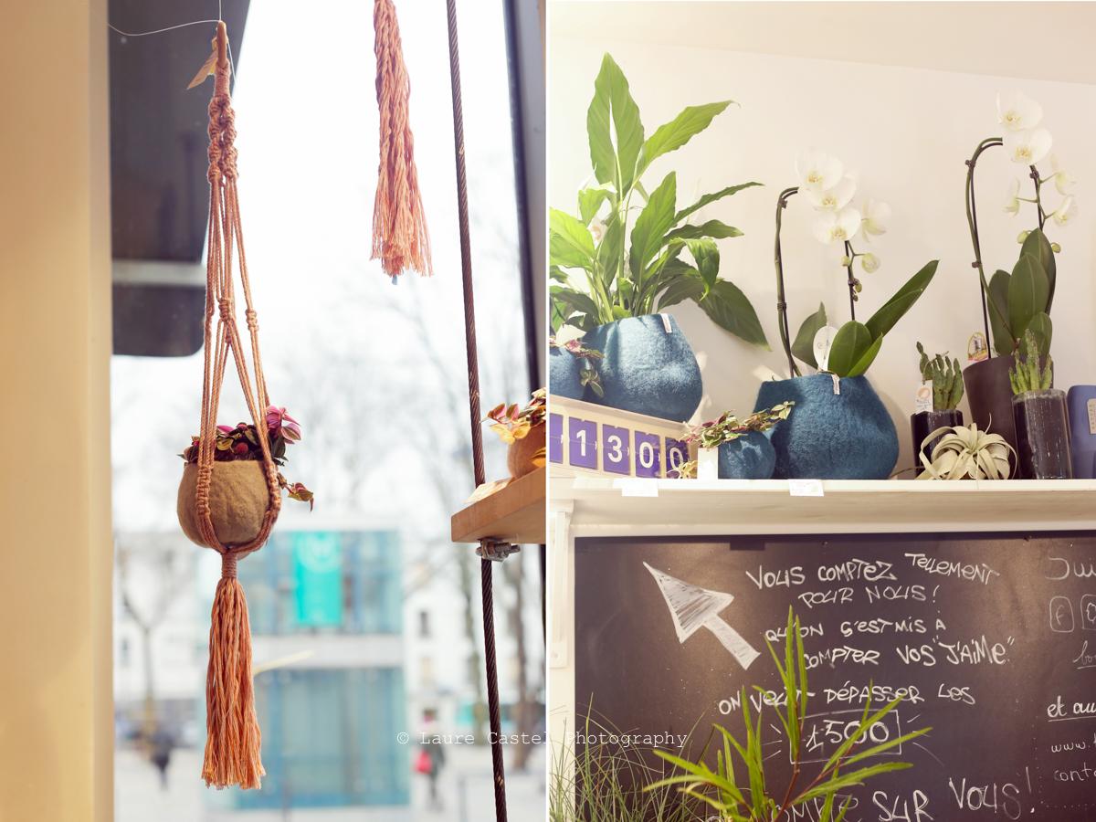 fleuriste boutique Pompon montreuil
