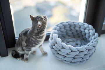 Ohhio arm knitting