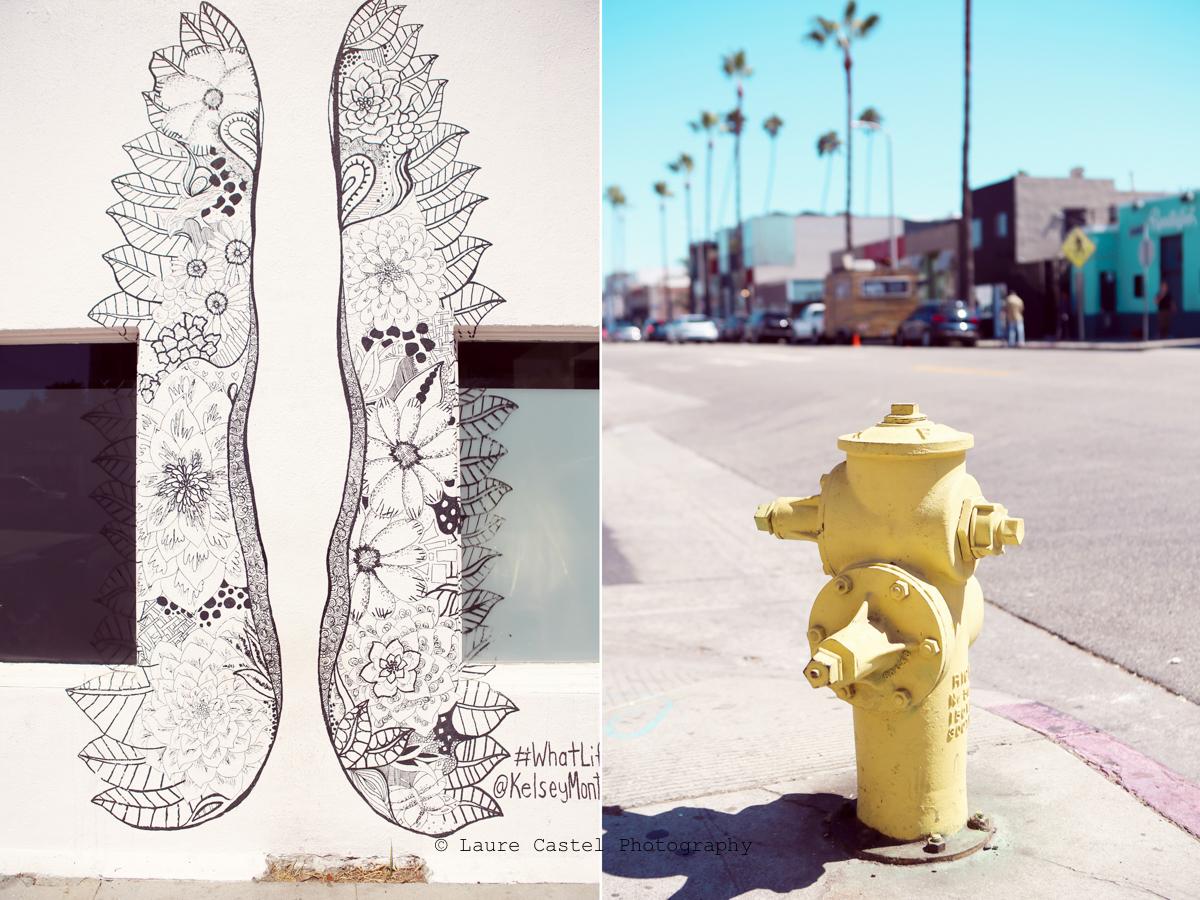 Californie Venice Beach Abbott Kinney | Les Petits Riens