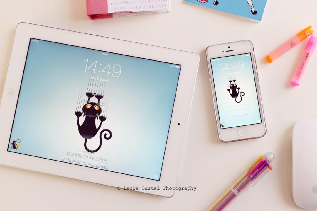 Fond d'écran chat Les Petits Riens