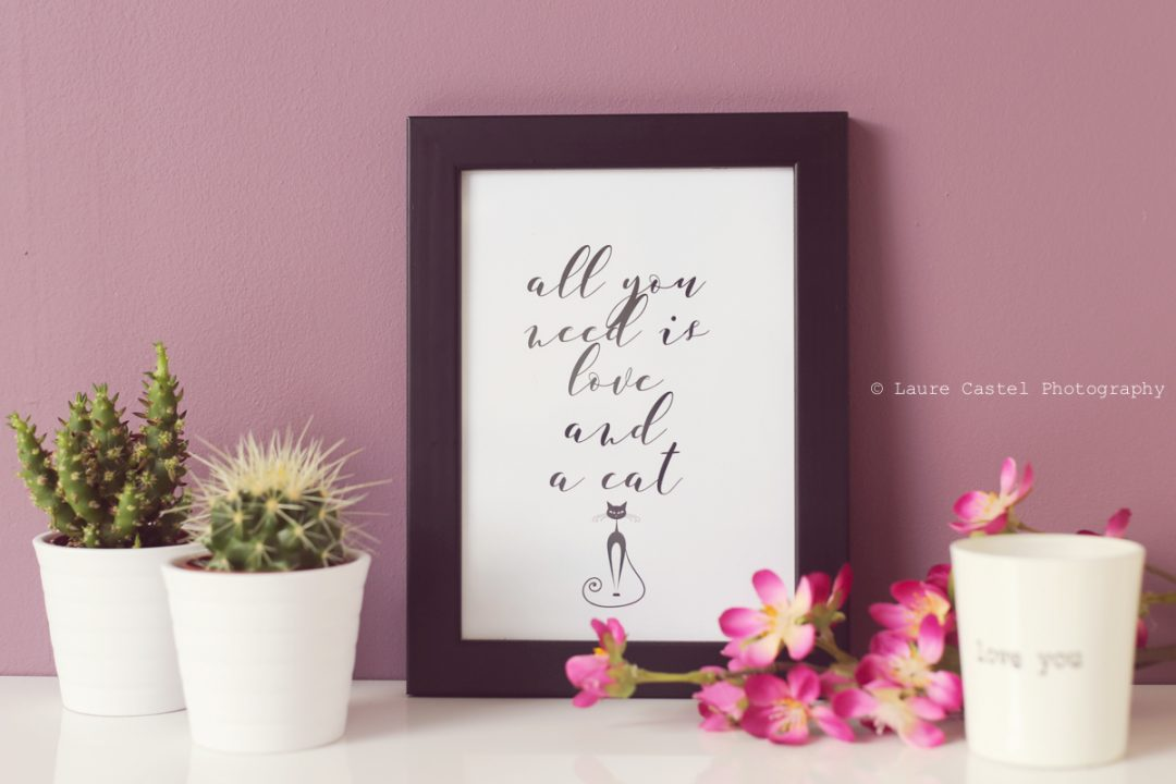 Affiche All you need is love and a cat A4 à imprimer